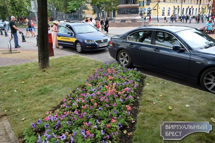 Возле памятника 1000-летию Бреста петуньи и рулонные газоны, а на Ленина деревья в кадках
