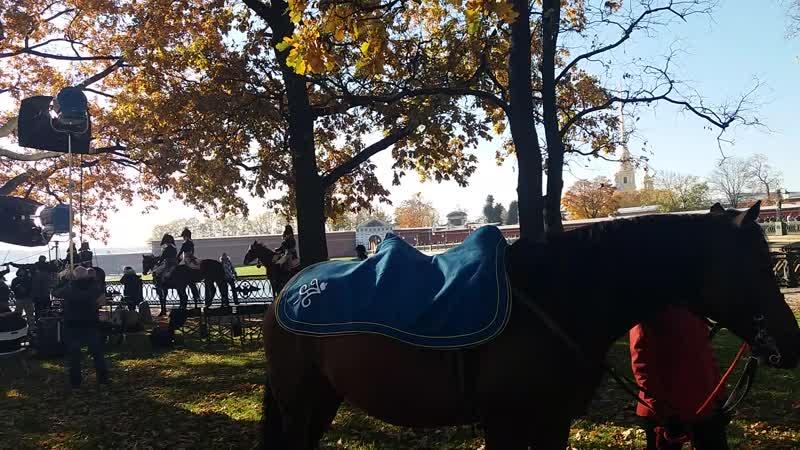 Лошадь императора Александра 1