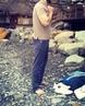 Evgen_hard_boroda video