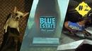 Тот ещё зверинец ► Blue Estate прохождение 2