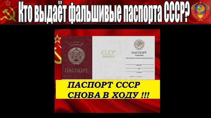 Что ожидает тех, кто выдает фейковые паспорта СССР (С.В. Тараскин) - 03.05.2018