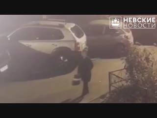 Камеры сняли грабителей, напавших на девушку в Невском районе города