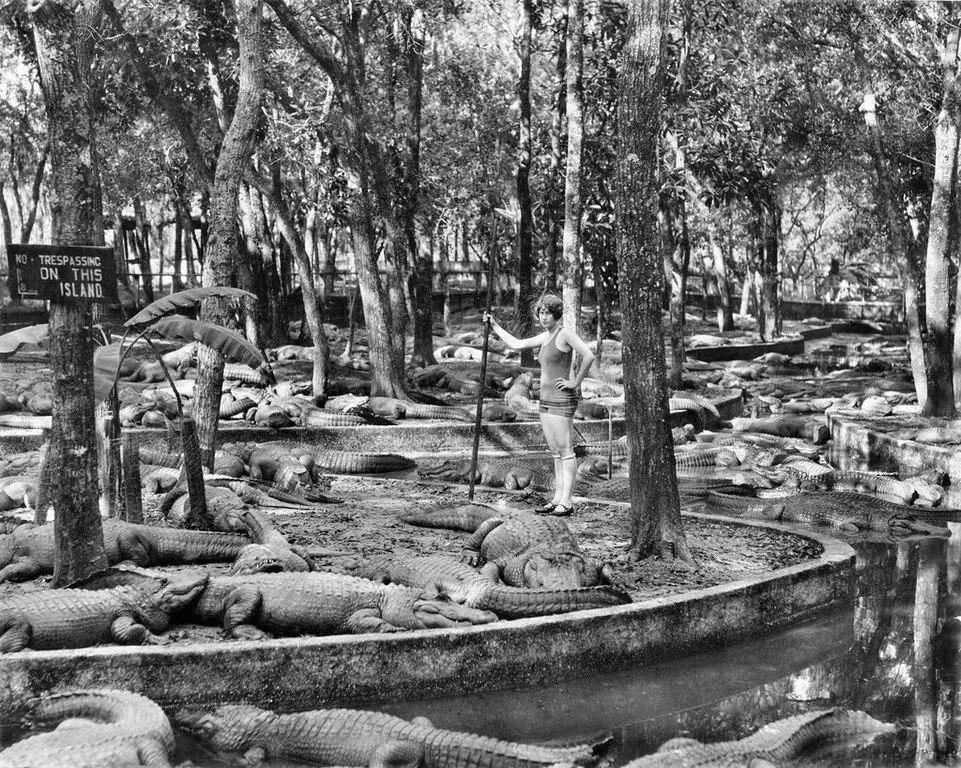 Работница крокодиловой фермы, США, 1926 год.