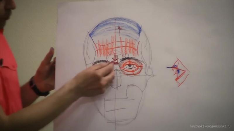 Анатомия. Мимика и Портрет. Александр Рыжкин