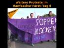 Weitere Proteste im Hambacher Forst Tag 6