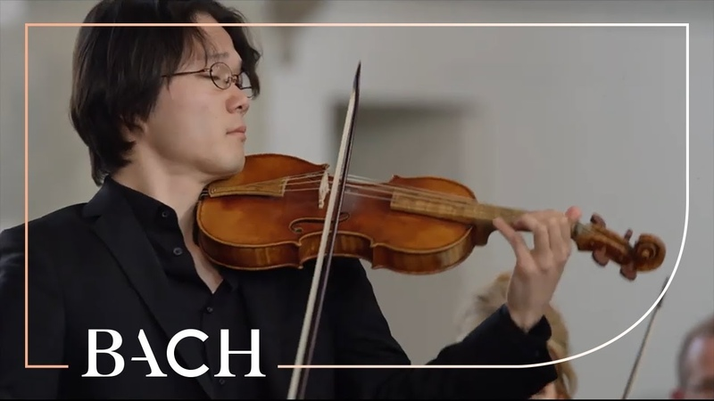 Bach - Erbarme dich from St Matthew Passion BWV 244   Netherlands Bach Society