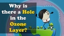 Why is there a Hole in the Ozone Layer? | aumsum kids education
