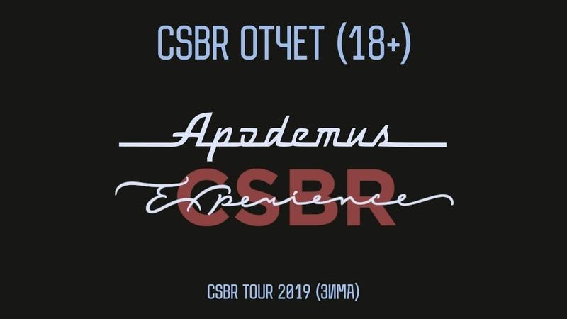 CSBR Tour 2019 Apodemus † CSBR Experience   CSBR отчет