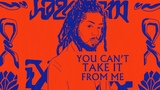 Major Lazer - Cant Take It From Me (feat. Skip Marley) (Official Lyric Video)