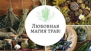Любовная Магия Трав Тайна приворотной травы