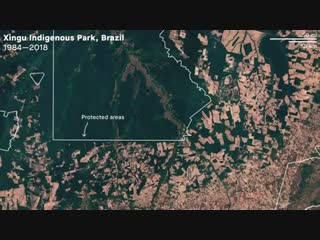 Reserva Xingu 1984-2018