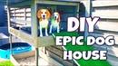 DIY Dog House with Pool , Sandbox and Dog Lounge | Louie The Beagle
