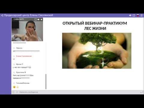 Вячеслав Барс Мощные трансформационные техники