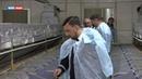 Пушилин посетил единственную в Республике промышленную кролеферму ДонКрол