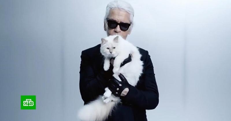 Карл Лагерфельд завещал смешать свой прах с прахом любимой кошки