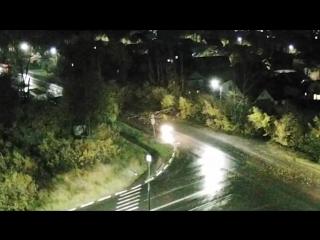От сильного порыва ветра на улице Сибирской упало дерево
