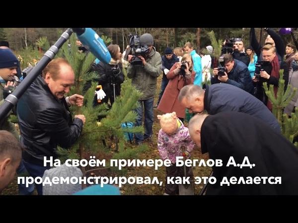 Всероссийская акция «Живи лес» в посёлке Левашово, Выборгский район, которую посетил врио Беглов А.Д