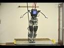 Atlas Revealed: Boston Dynamics' DARPA Robot