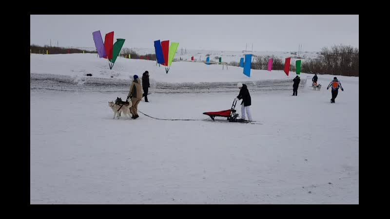 24 03 19 база отдыха Заречная Праздник зимних видов спорта