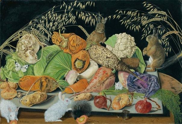 adolf dietrich (1877-1957) швейцарский художник, один из самых известных представителей наивного искусства. #наив@art_shoc родился в семье бедного фермера в кантоне thurgau. еще в школе