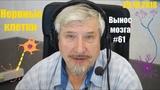 Нервные клетки Сергей Савельев (Вынос мозга #61)