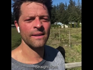 """Misha Collins on Instagram_ """"Im doing man-on-the-street interviews about politi"""