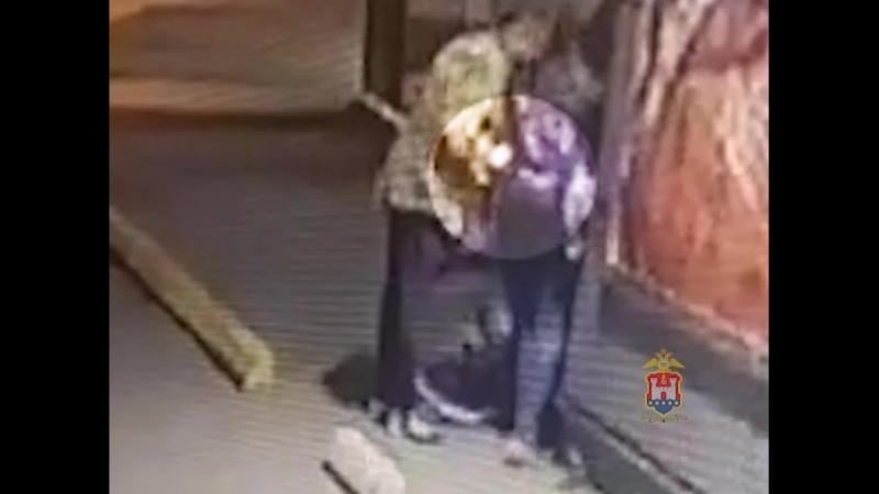 Полиция раскрыла кражу из рюкзака девочки [ОВК]