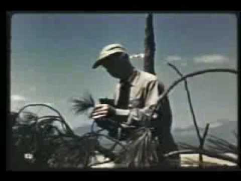Declassified U.S. Nuclear Test Film 11