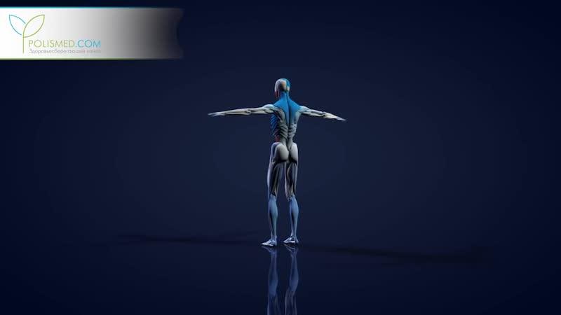 Что произойдет с Вашим телом, если есть гречку каждый день_