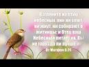 С Господом приобретается все