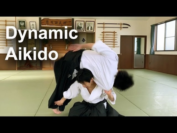 Dynamic and Technical Aikido - Shirakawa Ryuji shihan