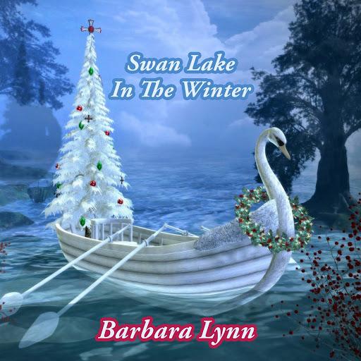 Barbara Lynn альбом Swan Lake In The Winter
