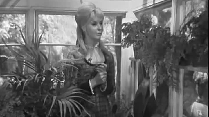 Сага о Форсайтах-1967-2