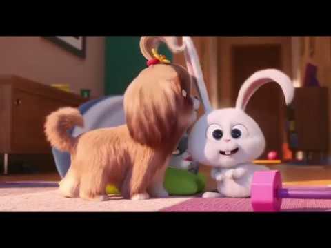 Тайная жизнь домашних животных 2   The secret life of Pets 2 2019
