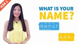 Learn Chinese Conversation for Beginners Free Language Practice to Study with English Subtitles A1