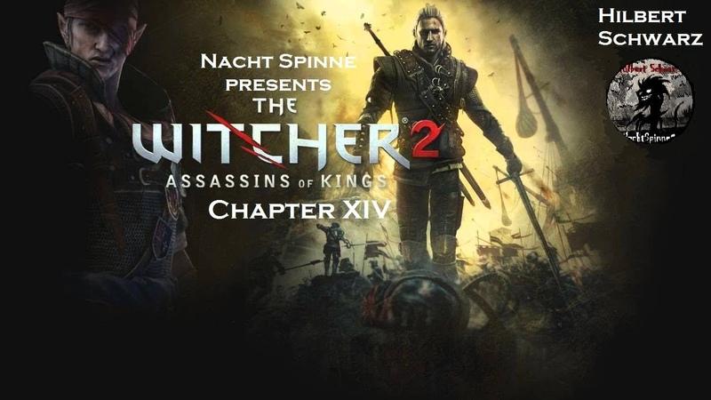 The Witcher 2 Часть 14 Два Общительных Тролля Конец 2 главы Прибытие в Лок Муинне