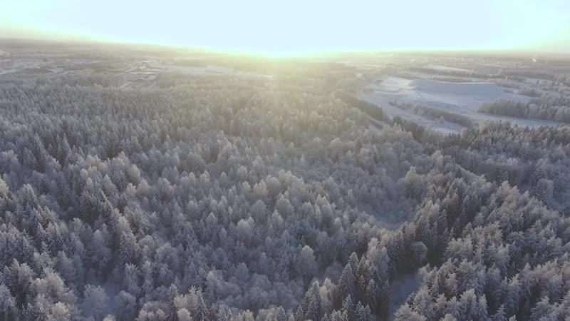 Искусство лесозаготовки. ГК УЛК - 14 лет