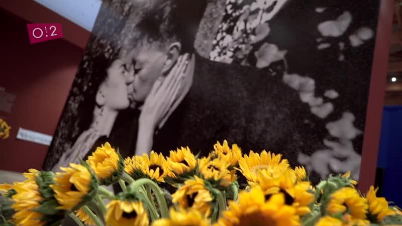 InstaНовости • 2018 • Выставка картин Фриды Кало и Диего Риверы