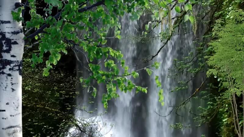 Футаж Весенний водопад
