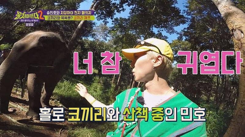 형들과 달리 능숙하게 코끼리와 산책하는 민호(Mino) (너 참 귀엽다♡) 뭉쳐야 뜬4579