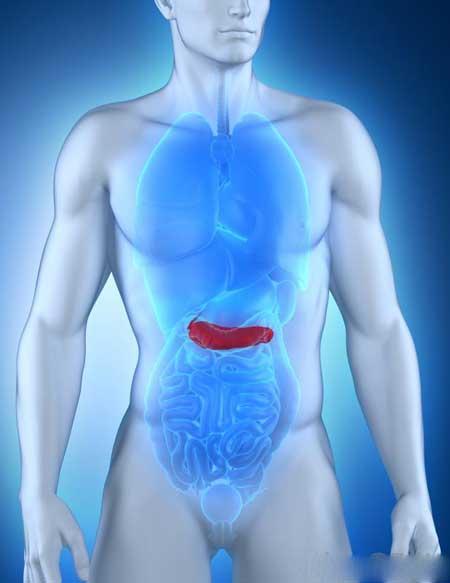 Вобэнзим включает три фермента, секретируемых поджелудочной железой.