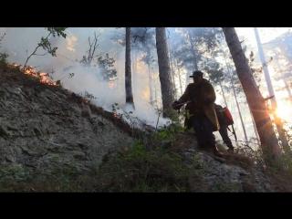 Крупный пожар в ущелье Уч-Кош под Ялтой тушат полтысячи человек