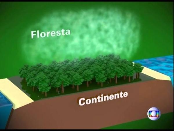 Falta D'agua x Devastação da Amazônia