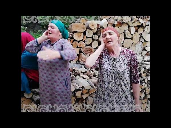 რაისა და ტაისა - მომღერალი დები პანკისიდან