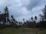 Индия,Гоа конец сезона дождей.Море,пляж,природа.
