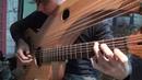 Greensleeves Harp Guitar Jamie Dupuis