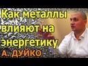 Как металлы влияют на энергетику Андрей Дуйко школа Кайлас