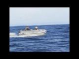 Фрегат. Испытания лодок Фрегат М-350, М-390 F и М-430_cut