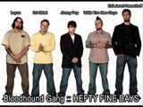 bloodhound gang vagina with lyrics