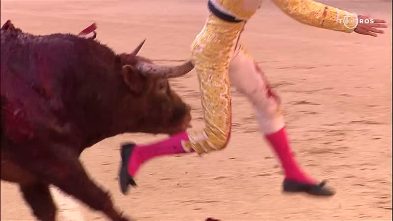 Насаживание быком французского матадора на рог. 25 мая 2019. Мадрид, Испания.